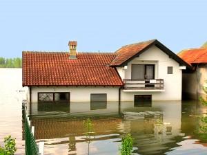 Flood Insurance Agent Bellevue, WA